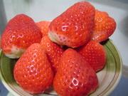 Sweet_001